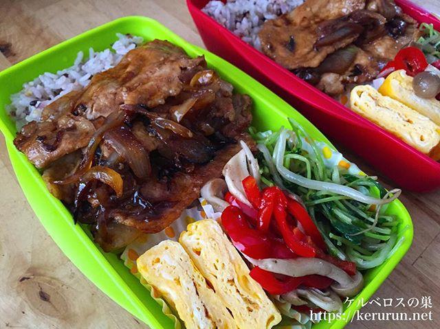 #弁当LOG 豚肉と玉ねぎの甘辛炒め弁当