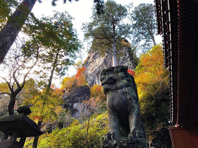 春名神社の紅葉
