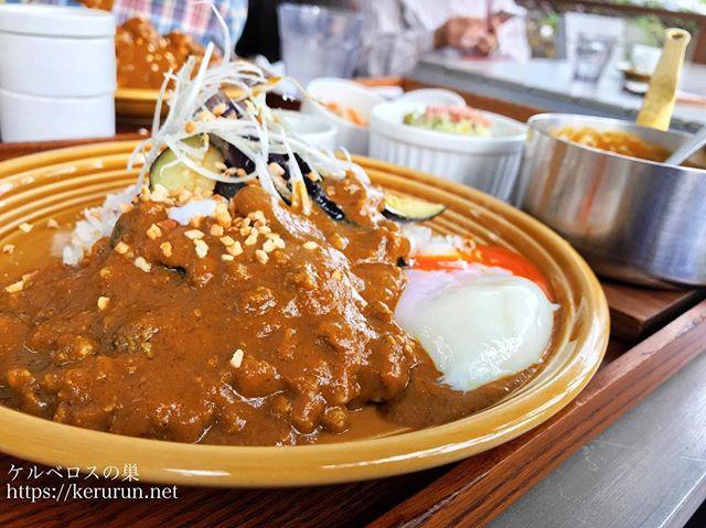 カキノキテラス挽肉カレー
